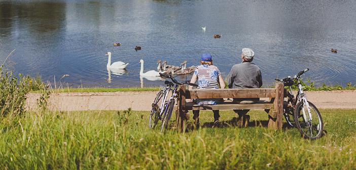 Ferry Meadows w Peterborough, Anglia