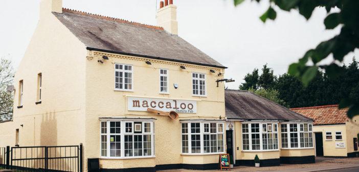 Pub Maccaloo zaprasza na polskie jedzenie