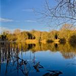 Peterborough in lens
