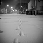 Winter in Peterborough