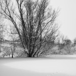 śnieg peterborough