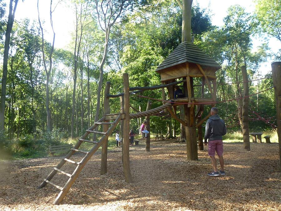 plac zabaw w lesie Fineshade Wood